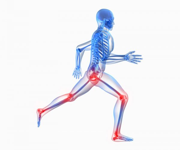 test-int-Osteogen